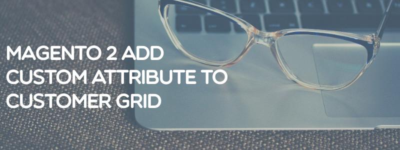 Magento 2 add custom attributes to customer grid